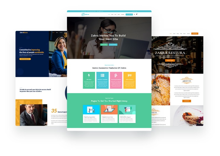 Make your blog look professional with Zakra