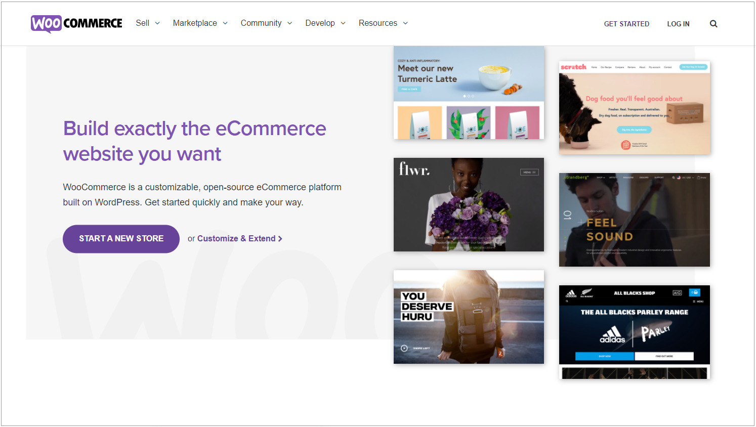 Already have a WordPress site, WooCommerce is a noteworthy platform