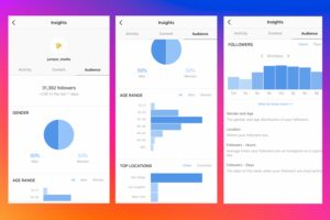 Audience insights help you break data into detailed information to manage Instagram followers easier