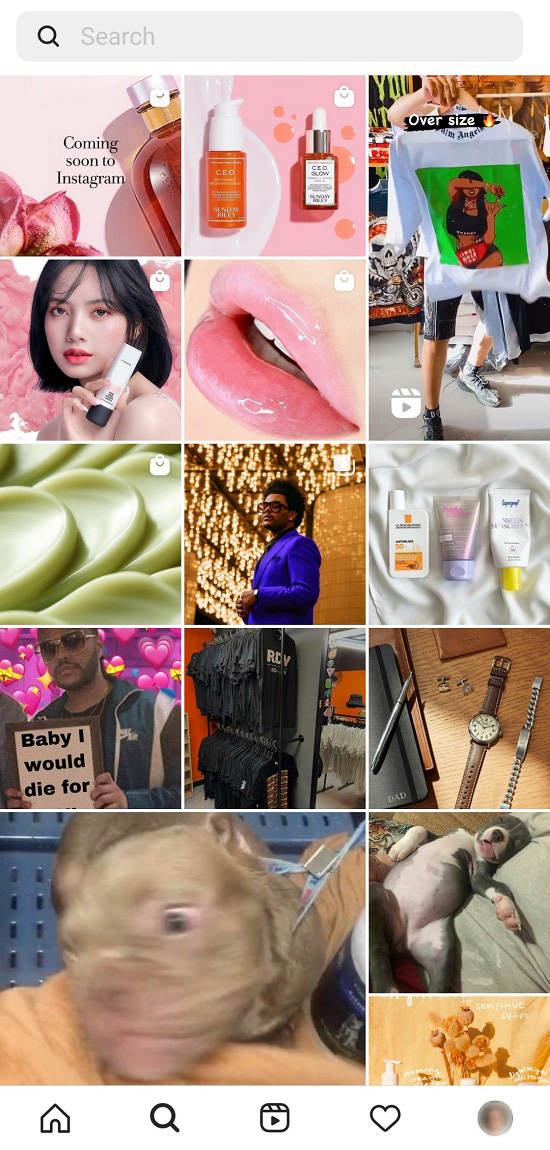 How the Instagram Explore page looks like