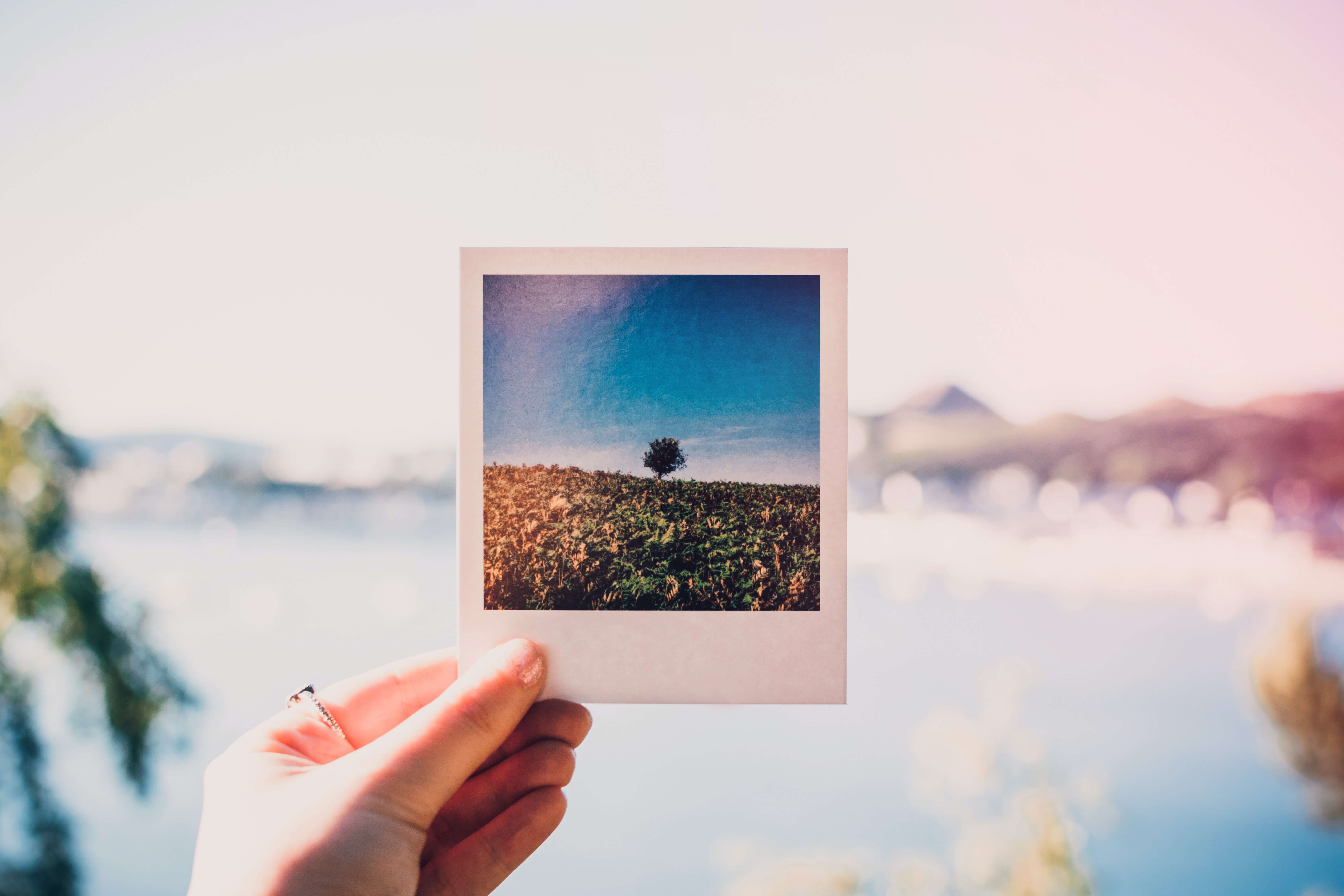 Use proper filters for your photos