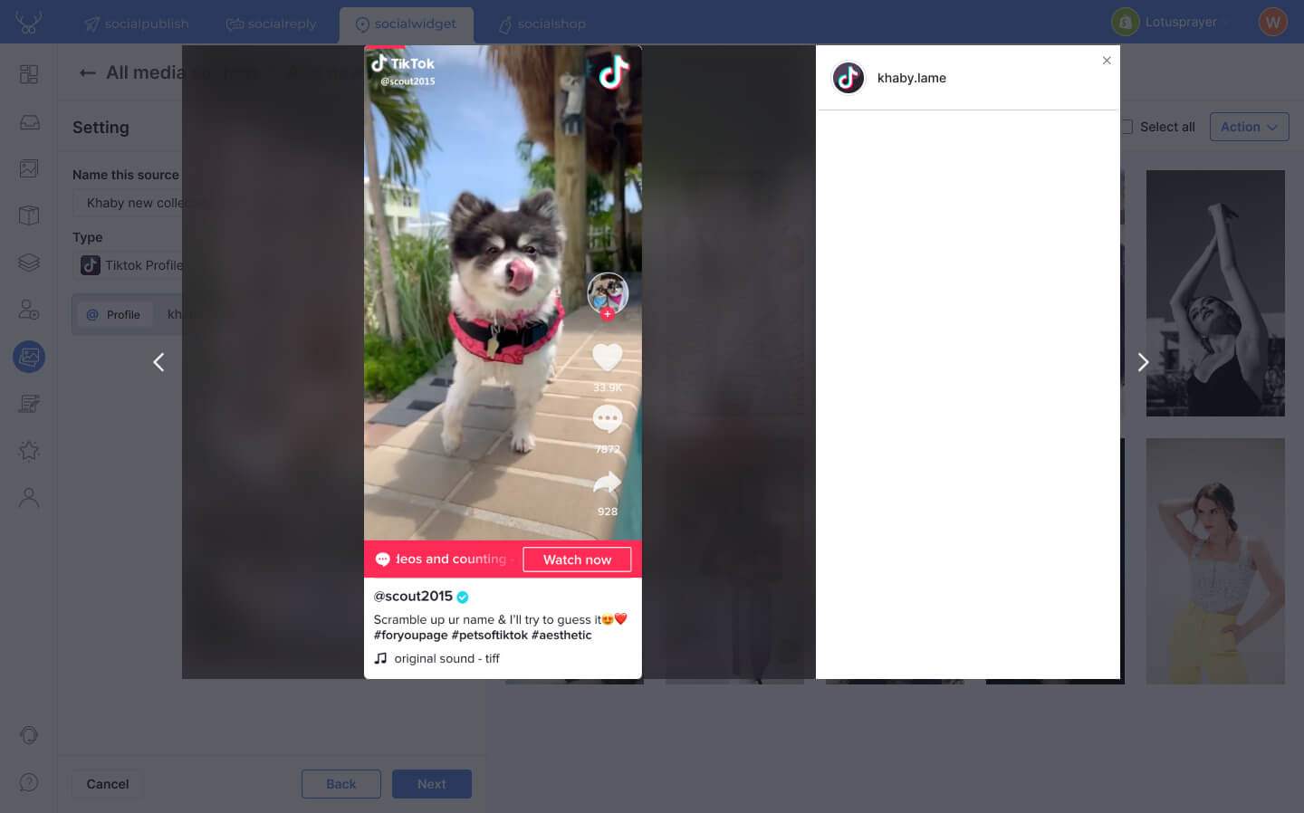 Your TikTok videos are imported to Socialwidget as media items