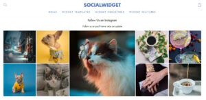 A nice and appealing storefront is in your hands with Socialwidget